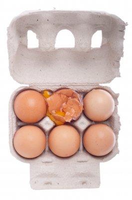 FSH hoch, eizellenqualität sinkt, menopause
